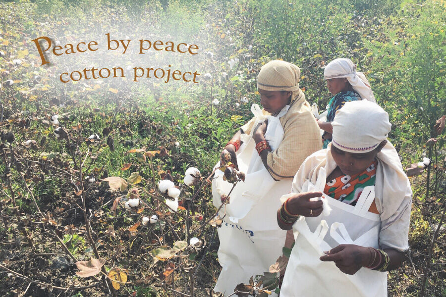 ~PEACE BY PEACE COTTON PROJECT~